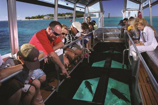 bali, glass bottom, marine, water, sport, activities, bali glass bottom boat, glass bottom boat tour, bali marine activities, bali water sport