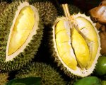 durian, indonesia, bali, agricultural, bali agricultural