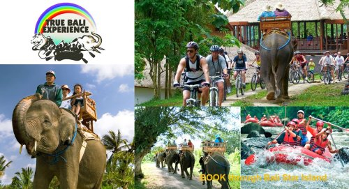 cycling elephant ride, elephant ride, elephant ride rafting, cycling elephant ride rafting, cycling elephant ride rafting package, elephant ride rafting package, true bali experience