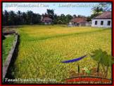 Exotic PROPERTY LAND SALE IN UBUD TJUB508