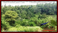 Magnificent PROPERTY LAND IN UBUD BALI FOR SALE TJUB546