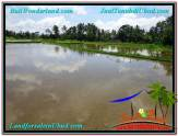 Affordable PROPERTY LAND SALE IN UBUD TJUB561