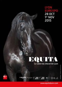 Equita Lyon 2015 ballad et vous