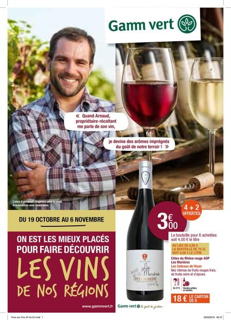 belmont-tramonet-foire-aux-vins-ballad-et-vous-1