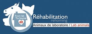 logo-graal-rehabilitation-ballad-et-vous