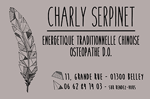 charly-serpinet-ballad-et-vous