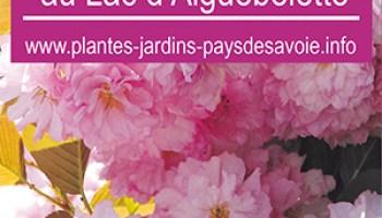 Journees Des Plantes Au Lac D Aiguebelette Rencontre Avec Patricia
