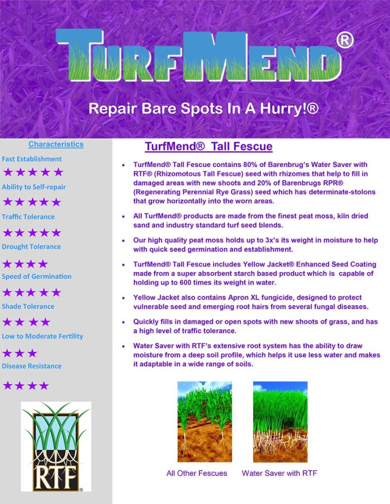TurfMend Tall Fescue