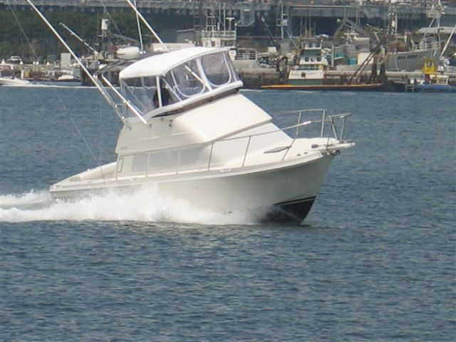 Used Skipjack Boats For Sale In San Diego Ballast Point