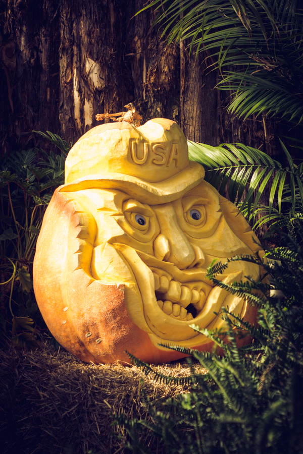 Can you imagine being able to carve something like this from a pumpkin? Amazing!