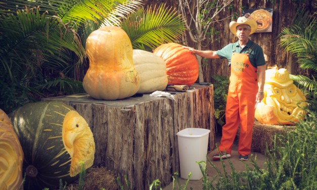 Farmer Mike:  Pumpkin Carving at the State Fair