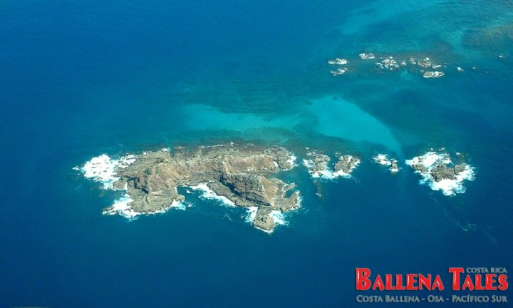 Ballena-Island-from-above-Candy-Fisher