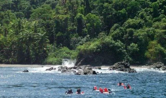 Does saying PURA VIDA change your brain? Costa Rica Travel Guide,, Caño Island,
