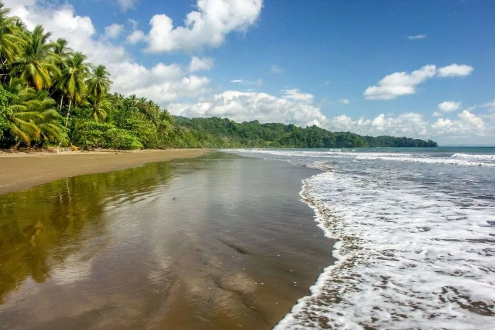 Cristal-Ballena-Area-Beach, Perfect for bird watching and wildlife holydays in Costa Rica