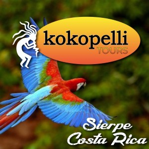 kokopelli tours