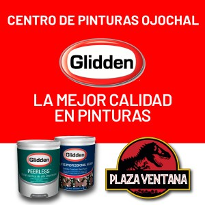 Glidden brand paint shop and paint accessories, Plaza Ventanas