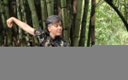 Tai Chi the supreme art - arte supremo