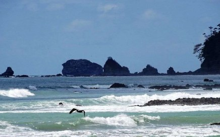 Visit the South Pacific & Osa Peninsula, Costa Rica