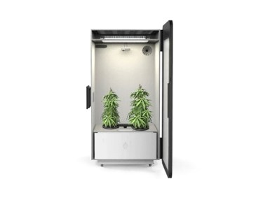 Leaf 'Plug N Plant' Cannabis Growing System