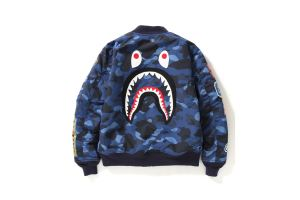 BAPE COLOR CAMO Capsule