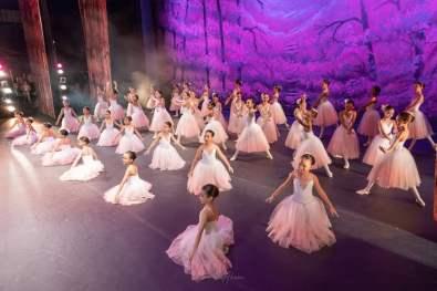 ballet-academy-blog-dia-danza-3