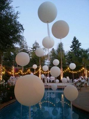 Campbell Balloon Designs