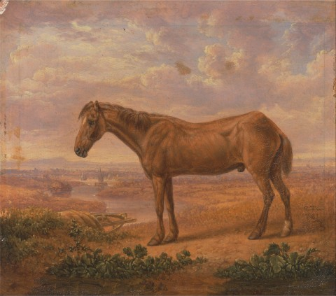 Charles_Towne_-_Old_Billy,_a_Draught_Horse,_Aged_62_-_Google_Art_Project