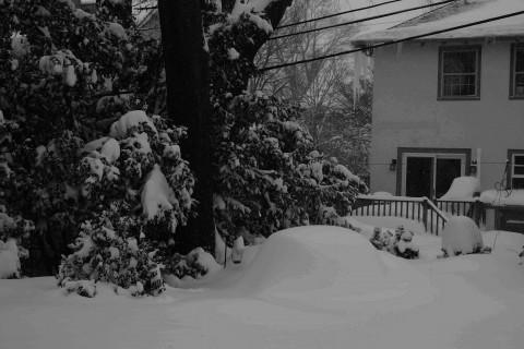 2-15-snow view