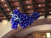 hanging-balloon-grapes21