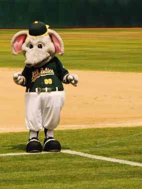Mascot at Coliseum