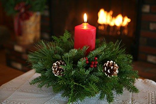 Plant And Sip Candle And Evergreen Centerpiece First Of