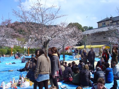 The group of international students at Hanami.