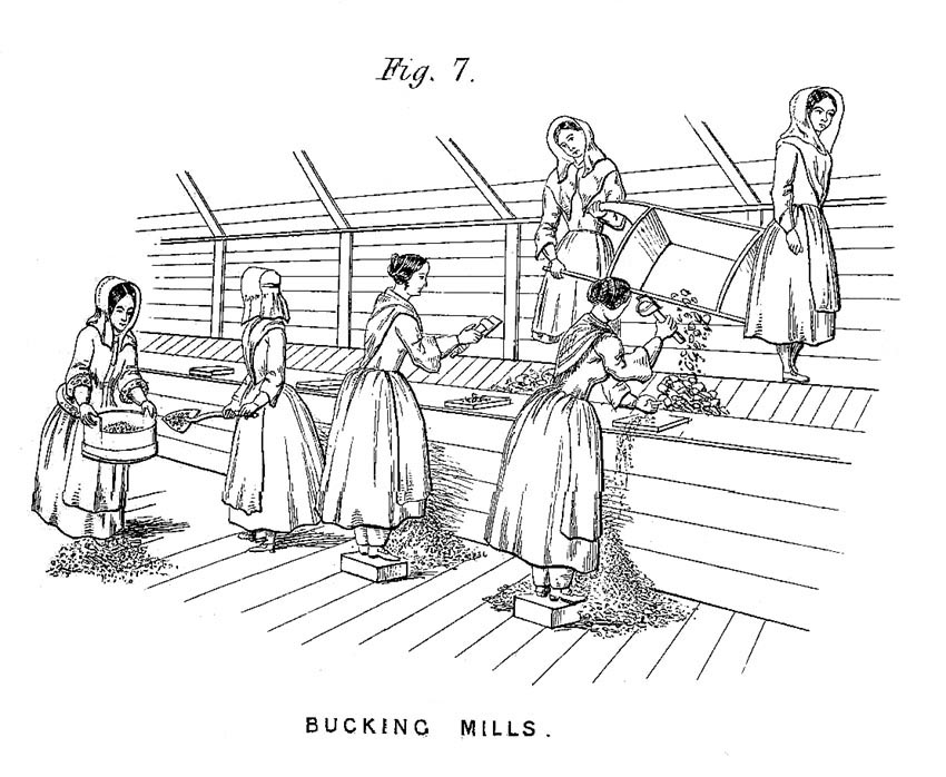 Bal Maidens at Work