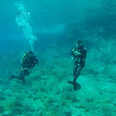 diving24