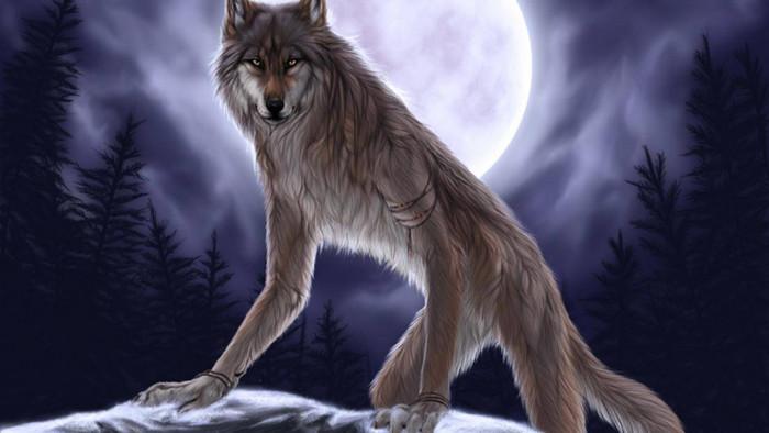 Girl Wallpaper Free Down Werewolf Wallpaper 15558 Baltana