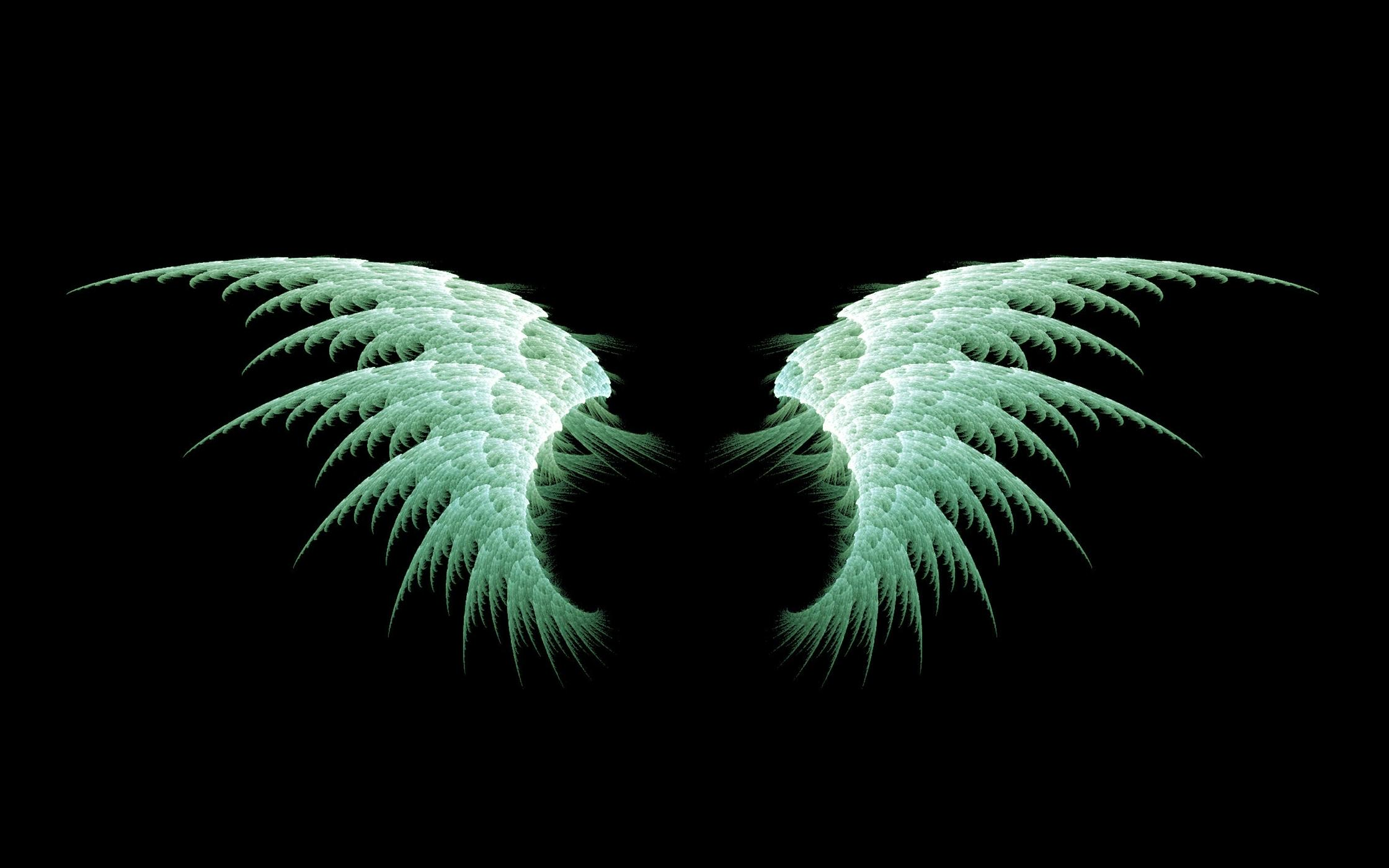 wings desktop wallpaper 06450