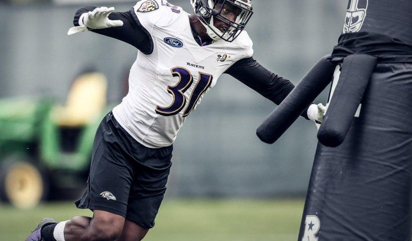 Baltimore Ravens Practice Squad Nick Keizer Chistopher Ezeala Robertson Daniel Randin Crecelius Alvin Jones Kofi Amichia Tyler Ervin Bennet Jackson