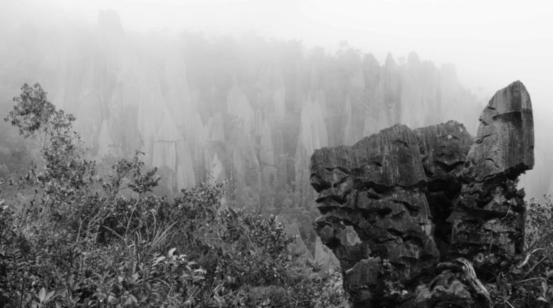 The Pinnacles, Mulu