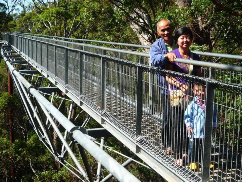 Tree Top Walk, Walpole