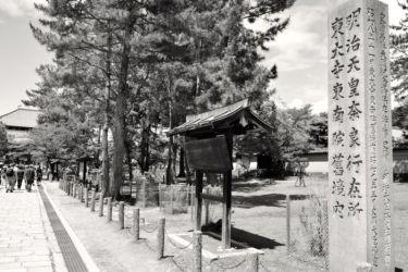 Pathway to Todaiji, Nara