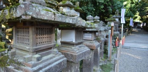 Stone lanterns at Kasuga Grand Shrine, Nara