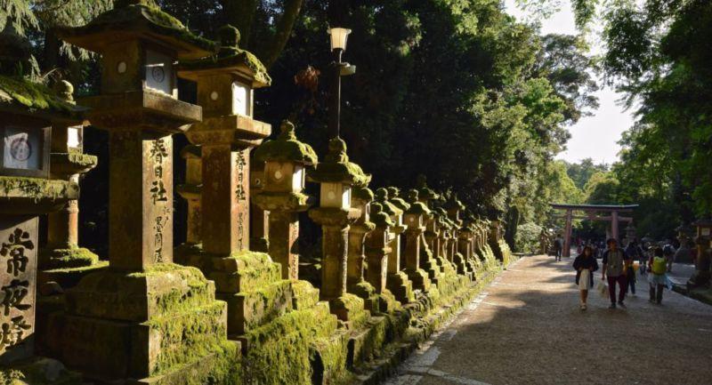 Stone lanterns lining the pathways leading back to train station