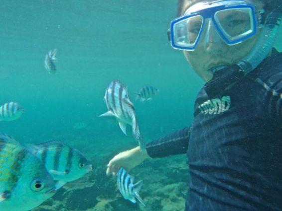 Snorkelling at Salang beach, Tioman