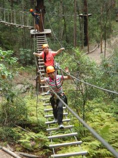 TreeTop Challenge: Huge variety of obstacles.