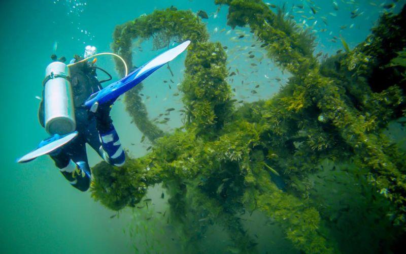 Kenyalang Wreck. An abandoned oil platform turned on its side, it is now hosting plenty of marine life.