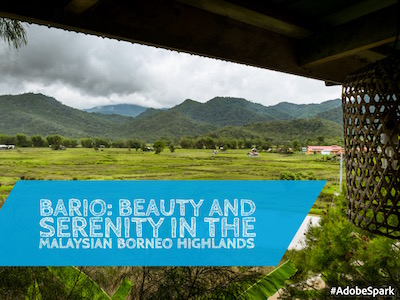 Bario: Beauty and serenity in the Malaysian Borneo Highlands