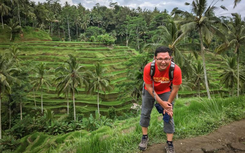 Tegalalang Rice Terrace (Bali)