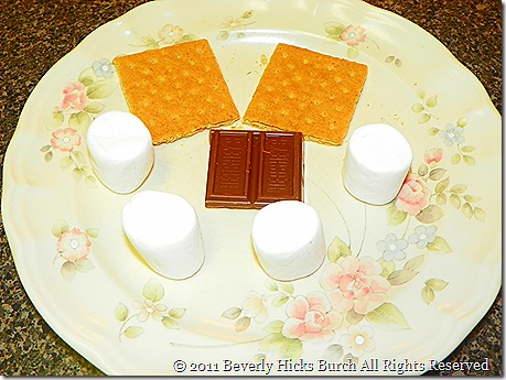 Ingredients for one Smore