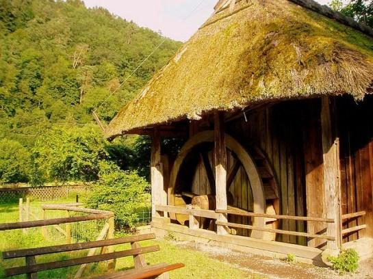 Baden Wuerttemberg e Foresta Nera