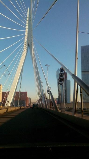 ponte-rotterdam_med_hr